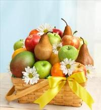 All Fruit Basket for Sympathy by Cremation Funeral Flowers.com