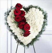 Bleeding Heart by Cremation Funeral Flowers.com